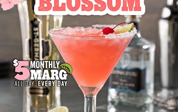 Margarita of the Month